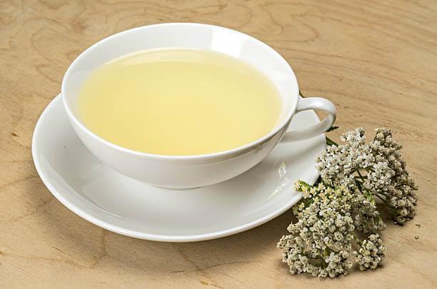 Čaj od hajdučke trave u beloj šoljici