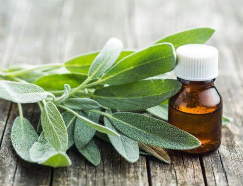 Žalfija za lice – biljka koja zaista pomaže